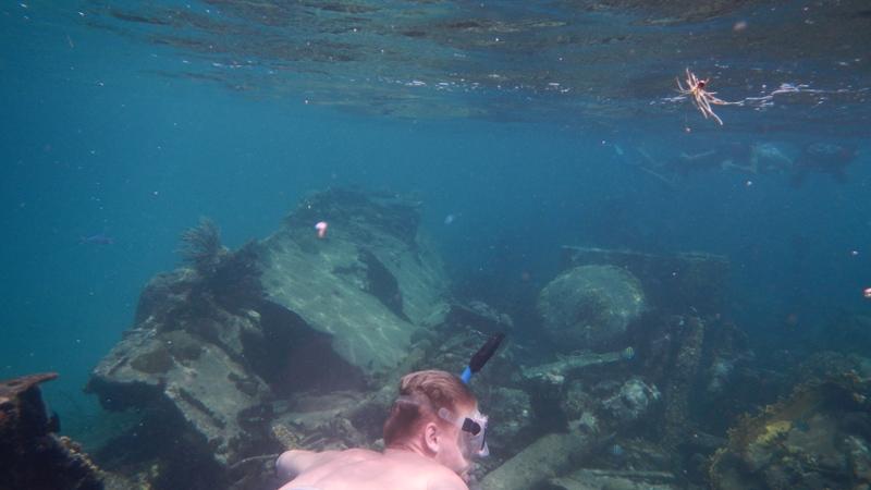 Dog Island Snorkeling